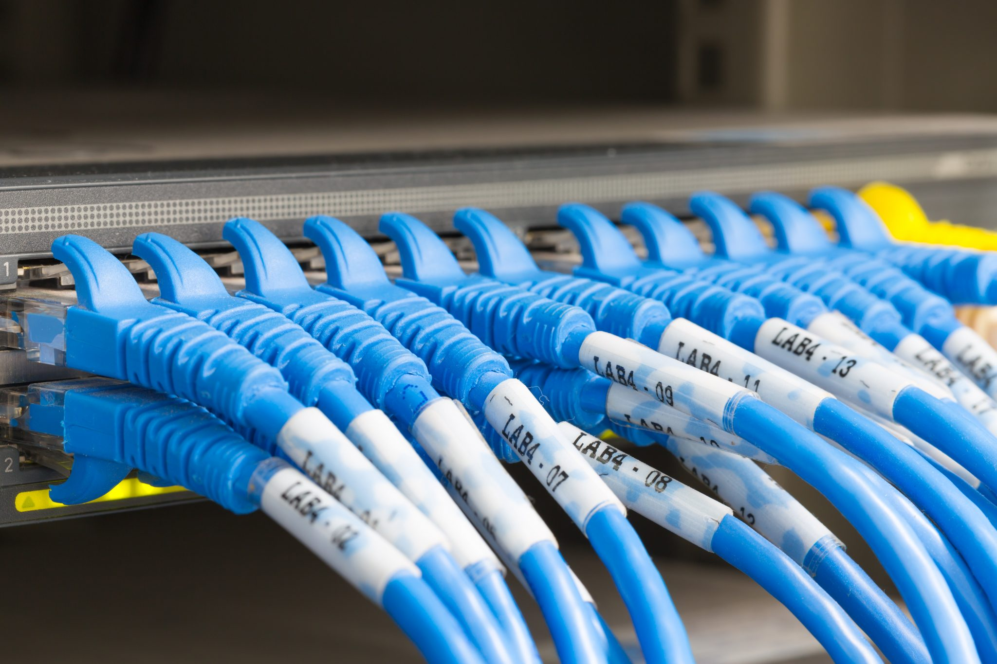 network cables connected to router ports